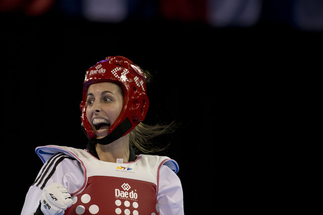 Argentina's Alexis Arnoldt reacts during her bronze medal match against Brazil's Julia Vasconcelos in the women's taekwondo under-67kg category at the Pan Am Games in Mississauga, Ontario, Tuesday, July 21, 2015. Arnoldt won the match. (Photo by Rebecca Blackwell/AP Photo)