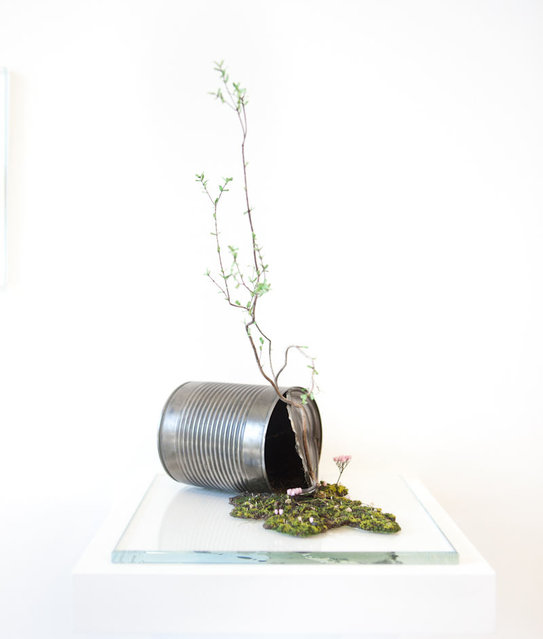 Plant Sculpture By Emeric Chantier