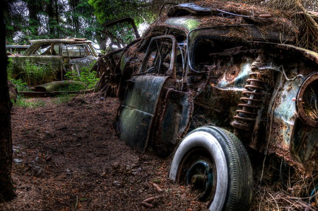 """A forest near Chatillion, a small village in Belgium, used to be home to a vintage car graveyard. This """"car graveyard"""" has since been cleaned up, but photographer Theo van Vliet had the chance to explore the forest and photograph the cars beforehand. (Photo by Theo van Vliet)"""