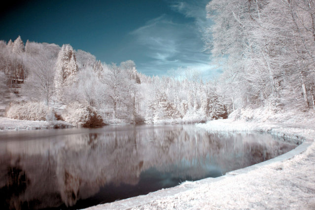 Miserden Park lake pictured in infra-red. These are the stunning images of what looks like a picturesque winter wonderland – but actually shot in the middle of summer. Amateur photographer Catherine Perkinton, 45, has spent the summer travelling around the country to create the fabulous images by utilising infra-red. She uses up her Canon 350D as its simpler nature allows it to capture colours in a more unique way than more advanced SLRs. (Photo by Catherine Perkinton/SWNS/ABACAPress)