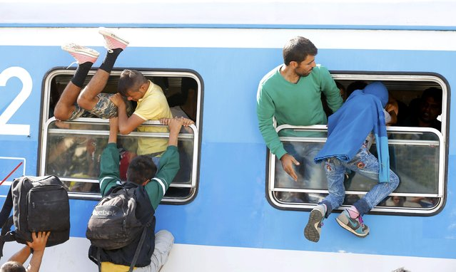Migrants scramble through a train's window at the station in Beli Manastir, Croatia September 18, 2015. (Photo by Laszlo Balogh/Reuters)