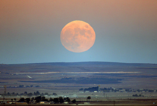 A full moon rises over the Turkish-Syrian border line close to the Syrian town of Kobani on November 6, 2014. (Photo by Yannis Behrakis/Reuters)