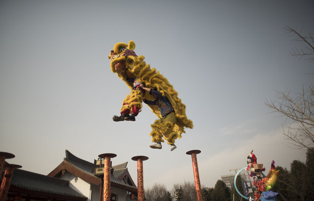 Chinese people parade the dance of the Lion at the Tang Paradise Park in Xi'an, Shaanxi province, on February 14, 2018, ahead of the coming Lunar New Year, marking the Year of the Dog. The Lunar New Year falls on February 16 this year, with celebrations in China scheduled to last for a week. (Photo by Fred Dufour/AFP Photo)