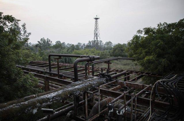 A network of pipes rust at the abandoned former Union Carbide pesticide plant in Bhopal November 14, 2014. (Photo by Danish Siddiqui/Reuters)