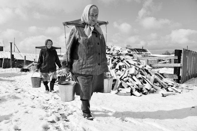 """""""Rural life"""". (Photo by A. M. Stepanenko)"""
