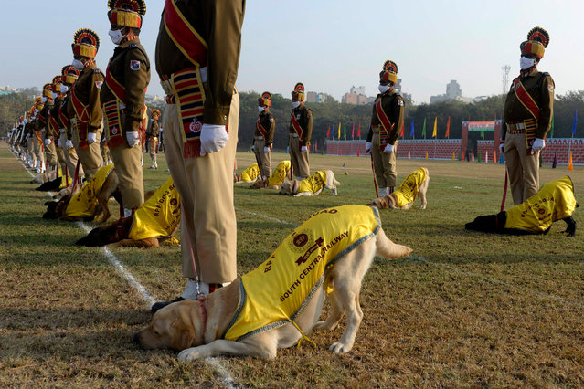 Railway Protection Force (RPF) personnel along with dogs take part in the Republic Day Parade in Secunderabad, the twin city of Hyderabad on January 26, 2021. (Photo by Noah Seelam/AFP Photo)