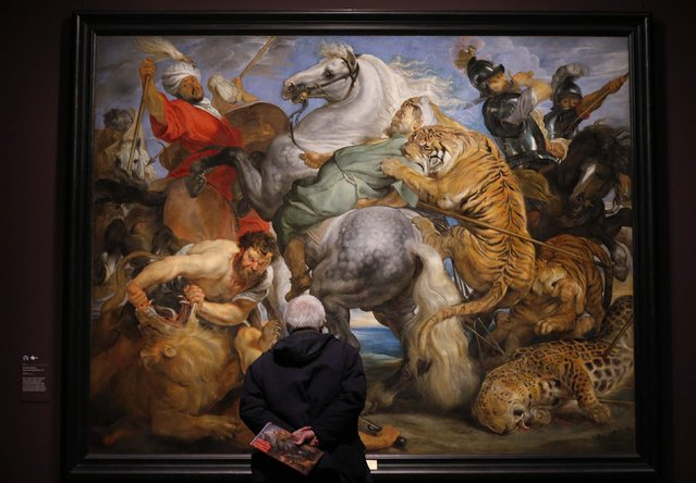 "A visitor looks at ""Tiger, Lion and Leopard Hunt"" from 1617 by Peter Paul Rubens at an exhibition entitled ""Rubens and His Legacy: Van Dyck to Cezanne"" at the Royal Academy of Art in London January 20, 2015. The exhibition features Rubens' 1633-1635 masterpiece ""The Garden of Love"" and runs January 24-April 10. (Photo by Suzanne Plunkett/Reuters)"
