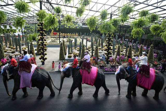 Couples ride elephants during a Valentine's Day celebration at the Nong Nooch Tropical Garden in Chonburi province, Thailand, February 14, 2021. (Photo by Chalinee Thirasupa/Reuters)