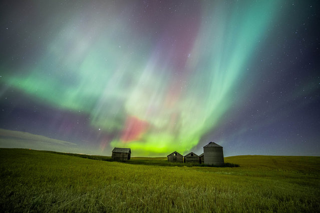 The aurora photographs are special to me because it takes determination and patience. (Photo by Neil Zeller/Caters News)