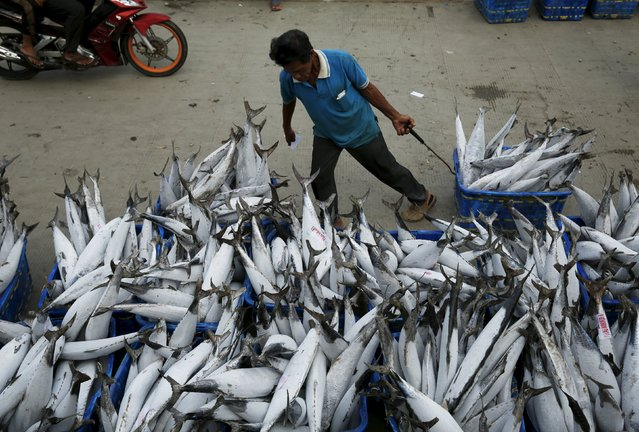 A worker drags a bucket of frozen tuna to sell at Muara Angke fish auction in Jakarta, January 4, 2016. Indonesia's annual inflation rate cooled to the lowest in six years in December, which might pave the way for the central bank to cut a benchmark rate held at 7.50 percent since February 2015. (Photo by Reuters/Beawiharta)