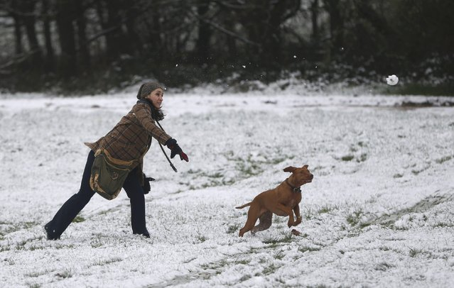 A woman throws a snowball for her dog in north London, Britain January 17, 2016. (Photo by Neil Hall/Reuters)