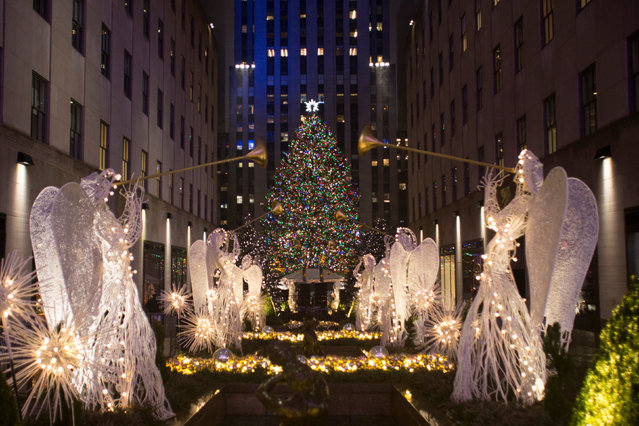 The Christmas tree stands lit after the lighting ceremony for the 84th annual Rockefeller Center Christmas Tree at Rockefeller Center in Manhattan, New York City, U.S., November 30, 2016. (Photo by Alex Wroblewski/Reuters)