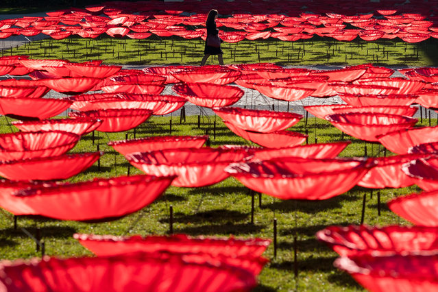 A woman walks past an art installation of 3,200 giant poppy flowers made of artificial silk to remember the end of World War I at Koenigsplatz square in Munich, Bavaria, Germany, 05 November 2018. The art installation of German artist Walter Kuhn will be formally opened on November 11, the end of World War I. The red poppy flower is a symbol of remembrance for those who fought in WWI. (Photo by Lennart Preiss/EPA/EFE)