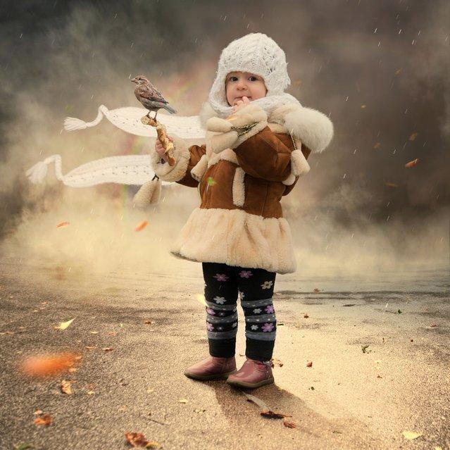 """The little bird"". (Photo by Ionut Caras)"