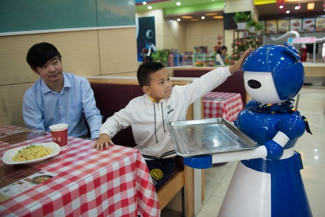 Robot waiters are seen working at a robot restaurant in Kunshan, China on May 22, 2016. The restaurant has a total of 10 robots in heights of 1.2 meters. Each robot costs 50,000 yuan and all used for delivery and cooking. (Photo by Zhong Zhenbin/Anadolu Agency/Getty Images)
