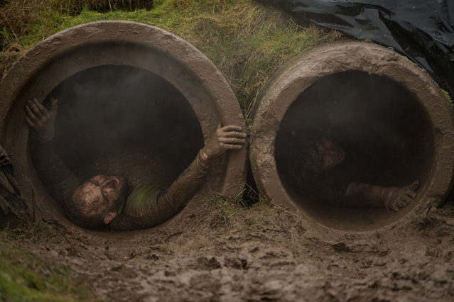 """Competitors slide through pipes as they take part in the """"Tough Guy"""" adventure race near Wolverhampton, central England, on January 29, 2017. (Photo by Oli Scarff/AFP Photo)"""