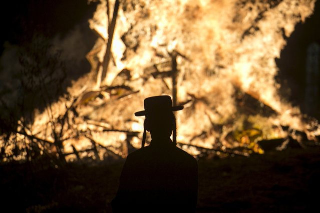 An ultra-Orthodox Jew looks at a bonfire as he and others celebrate the Jewish holiday of Lag Ba'Omer in Bnei Brak May 6, 2015. (Photo by Baz Ratner/Reuters)
