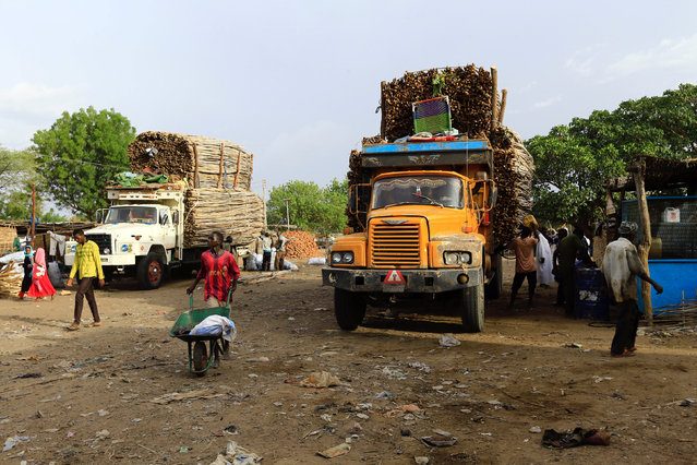 Workers wait near trucks carrying wood from Central Africa in Um Dafuq, Sudan May 29, 2017. (Photo by Mohamed Nureldin Abdallah/Reuters)
