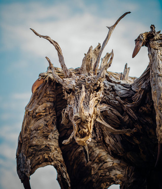 Driftwood Dragons Sculptures By James Doran