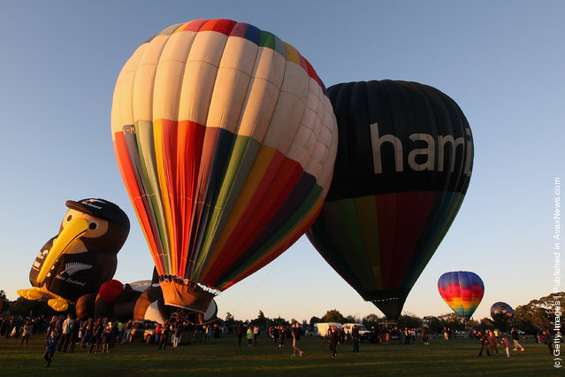 Hot air balloons rise as they leave Innes Common Park on in Hamilton, New Zealand