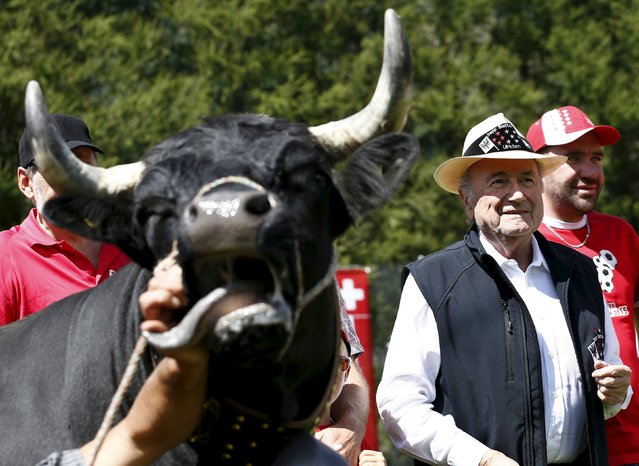"""FIFA President Sepp Blatter (R) poses next to a Herens cow called Colombo during the so-called """"Sepp Blatter tournament"""" in Blatter's home-town Ulrichen, Switzerland, August 22, 2015. The cow was given to Sepp Blatter as a present from the organizers. (Photo by Denis Balibouse/Reuters)"""
