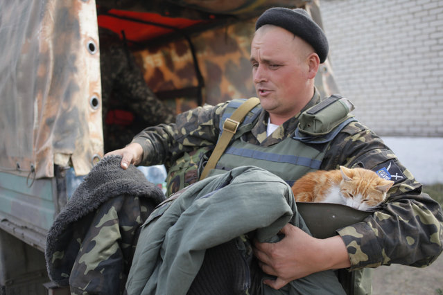 A Ukrainian soldier holds a cat as he receives warm clothes close to Luhansk in the eastern Ukraine Tuesday, September 23, 2014.  Despite of the declared cease-fire between the separatists and the Ukrainian military in eastern Ukraine occasional shooting has been reported. (Photo by Petro Zadorozhnyy/AP Photo)