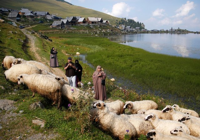 Tourists from the Middle East take pictures of sheep on the Prokosko Lake near Fojnica, Bosnia and Herzegovina, August 20, 2016. (Photo by Dado Ruvic/Reuters)