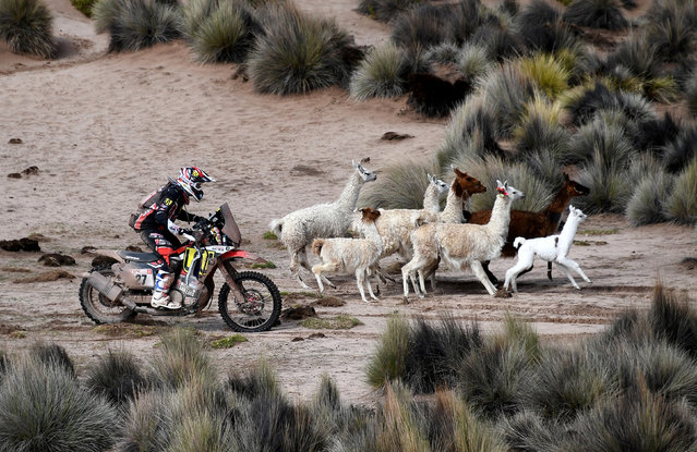 Argentinian biker Diego Martin Duplessis competes during Stage 7 of the 2018 Dakar Rally between La Paz and Uyuni, Bolivia, on January 13, 2018. (Photo by Franck Fife/Reuters)