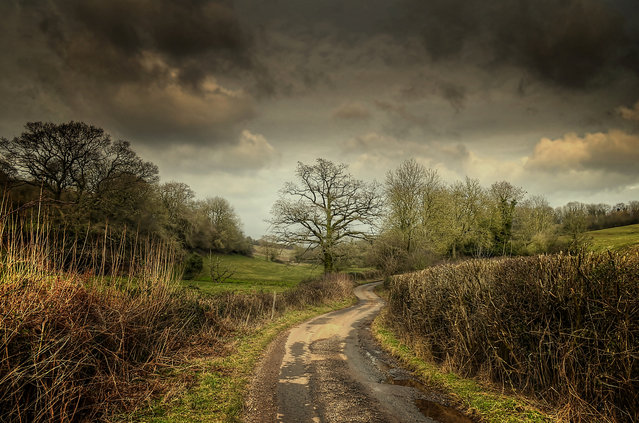 The English countryside. (Eric Goncalves)