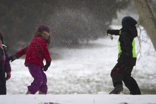 Children play in Central Park as it snows in the Manhattan borough of New York January 26, 2015. (Photo by Carlo Allegri/Reuters)