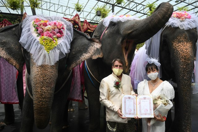 A couple poses with marriage certificates during a Valentine's Day celebration at the Nong Nooch Tropical Garden in Chonburi province, Thailand, February 14, 2021. (Photo by Chalinee Thirasupa/Reuters)