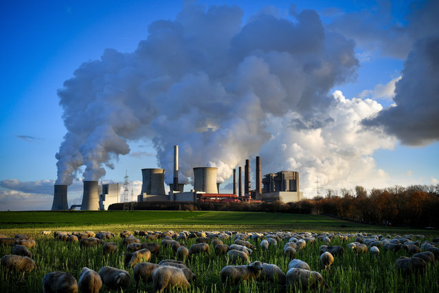 Steam rises from the brown coal-fired power plant Neurath (front-C) and Niederaussem (rear-L) operated by RWE in Bergheim, 04 December 2018. The Rhenish Brown Coal Field is Europe's largest carbon dioxide source. According to a report by the UN, the carbon dioxide (CO2) emissions have gone up for the first time in four years. The report came just days ahead of the COP24 United Nations Climate Change Conference taking place in Poland from 02 to 14 December 2018. (Photo by Sascha Steinbach/EPA/EFE)