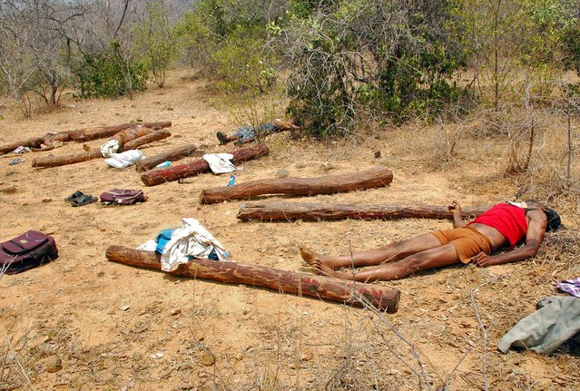 Bodies of people, who Indian police claim are suspected sandalwood smugglers killed during an operation by Indian security personnel, lie in the forest area of Chitoor district in the southern Indian city of Andhra Pradesh April 7, 2015. Indian police shot dead 20 stone-throwing sandalwood smugglers on Tuesday during the biggest operation for years to stamp out trafficking of the rare commodity, law-enforcement authorities said. (Photo by Reuters/Stringer)
