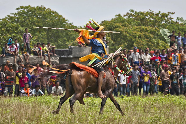 "A Pasola rider prepares to throw his spear during the pasola war festival at Wainyapu village on March 25, 2014 in Sumba Island, Indonesia. The Pasola Festival is an important annual event to welcome the new harvest season, which coincides with the arrival of ""Nyale"" sea worms during February or March each year. Pasola, an ancient ritual fighting game, involves two teams of men on horseback charging towards each other while trying to hit their rivals with ""pasol"" javelins and avoid being hit themselves. (Photo by Ulet Ifansasti/Getty Images)"