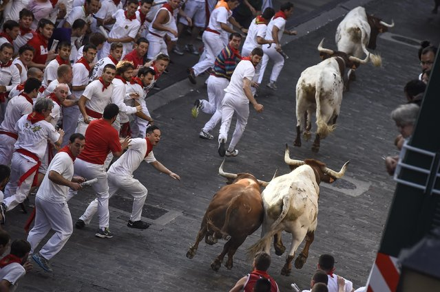 Runners on Santo Domingo way run beside Jandilla fighting bulls during the running of the bulls at the San Fermin Festival in Pamplona, Spain, Tuesday, July 7, 2015. (Photo by Alvaro Barrientos/AP Photo)
