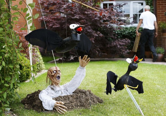 "A man works in his garden near his scarecrow titled ""Scaredcrows"" during the Scarecrow Festival in Heather, Britain July 29, 2015. (Photo by Darren Staples/Reuters)"