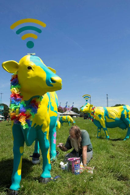 Undated handout photo of life-size fibreglass cows decorated by artist Hank Kruger, modelled on Worthy Farm's famous dairy herd, which have been converted into 4G wifi hotspots to benefit festival goers at this year's Glastonbury. The cows allow revellers to log on and upload pictures and videos at key points around the Somerset farm. (Photo by Nathan Gallagher/PA Wire)