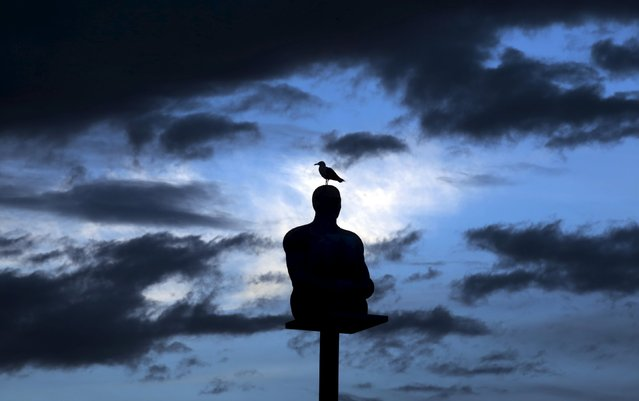 A seagull stands on a sculpture by Spanish artist Jaume Plensa at sunset on the place Massena in Nice, July 30, 2015. (Photo by Eric Gaillard/Reuters)