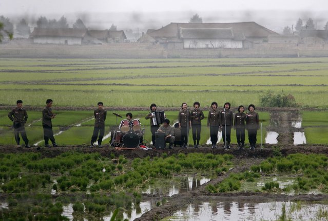 A music group performs on a path amid fields to greet the farmers at Hwanggumpyong Island, near the North Korean town of Sinuiju and the Chinese border city of Dandong June 6, 2012