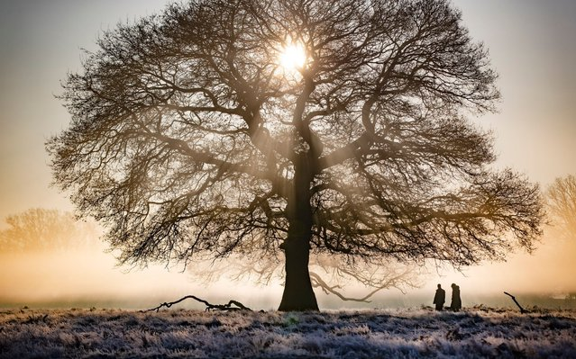 People walk through a misty Bushy Park in south west London at first light on February 7, 2020. After a period of clear and cold days, rain and wind are forecast for the next few days as the UK feels the effects of Storm Ciara. (Photo by Peter Macdiarmid/LNP)