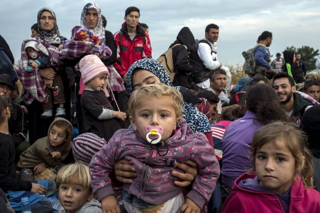 Migrants from Syria wait for a bus after crossing into Hungary from the border with Serbia on a field near the village of Roszke, September 5, 2015. (Photo by Marko Djurica/Reuters)