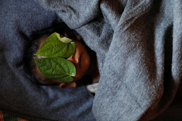 Leaves cover the face of 11-month-old Rohingya refugee Abdul Aziz, after his body was brought back to the family shelter, at the Balukhali refugee camp near Cox's Bazar, Bangladesh, a few hours after he died on December 4, 2017. Aziz, whose family fled Myanmar some two months ago, died at local clinic after suffering from high fever and severe cough for ten days, his mother said.. (Photo by Damir Sagolj/Reuters)