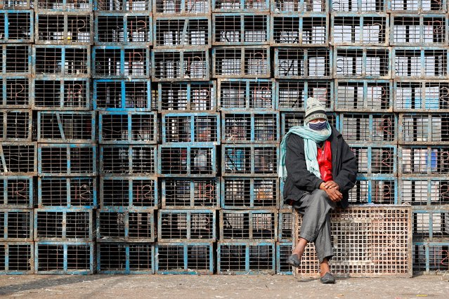 A worker sits next to empty chicken cages at a wholesale market in New Delhi, India on January 11, 2021. (Photo by Adnan Abidi/Reuters)