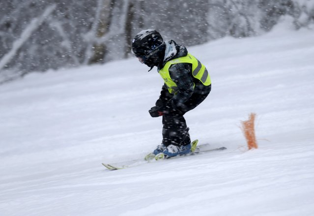 A boy attends alpine skiing lesson during World Snow Day event in Sigulda, Latvia, January 17, 2016. (Photo by Ints Kalnins/Reuters)