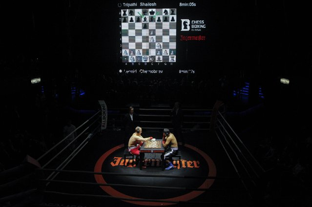 Leonid Chernobayev (L) of Belarus competes against India's Tripathi Shaliesh during their light heavyweight World Championship chessboxing match in Moscow November 28, 2013. Chessboxing alternates between a round of chess and a round of boxing in three minute intervals, and demands the most of its competitors, both mentally and physically. (Photo by Maxim Shemetov/Reuters)