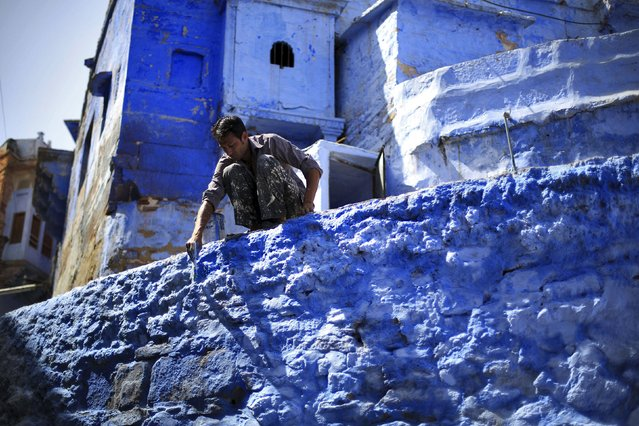 A worker paints a wall outside a house at Jodhpur in Rajasthan, April 8, 2015. (Photo by Adnan Abidi/Reuters)