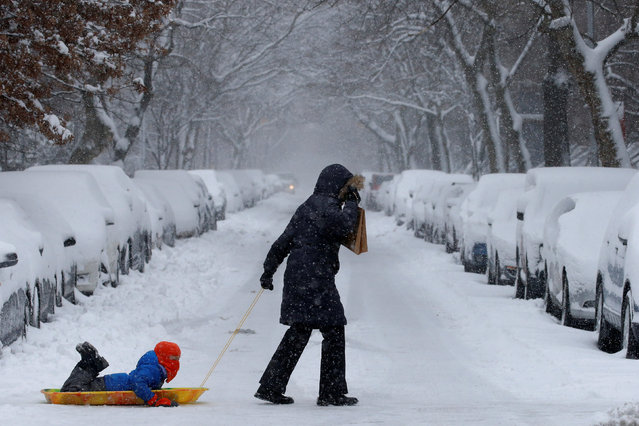A woman pulls her child on a sled in Brooklyn, New York City, U.S. February 9, 2017. (Photo by Brendan McDermid/Reuters)