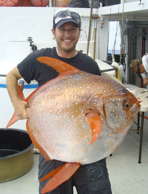 NOAA Fisheries biologist Nick Wegner holds an opah caught during a research survey off the California Coast in this undated handout photo provided by NOAA Fisheries/Southwest Fisheries Science Center. Researchers said in the journal Science on May 14, 2015, that opah, a deepwater denizen, is the first fish known to be fully warm-blooded, circulating heated blood throughout its body, enabling it to be a vigorous predator in frigid ocean depths. (Photo by Reuters/NOAA Fisheries/Southwest Fisheries Science Center)