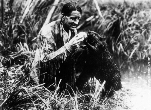 1930: English-born environmentalist and author Grey Owl (1888 - 1938) feeding a beaver. Born Archibald Stansfield Belaney in Surrey, he emigrated to Canada in 1906 and married a Mohawk woman