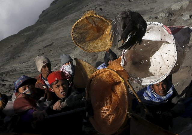 Villagers hold nets as try to catch offerings thrown by Hindu worshippers during the Kasada Festival at the crater of Mount Bromo, in Probolinggo, Indonesia's East Java province August 1, 2015. Villagers and worshippers throw offerings such as livestock and other crops into the volcanic crater of Mount Bromo to give thanks to the Hindu gods for ensuring their safety and prosperity. (Photo by Reuters/Beawiharta)